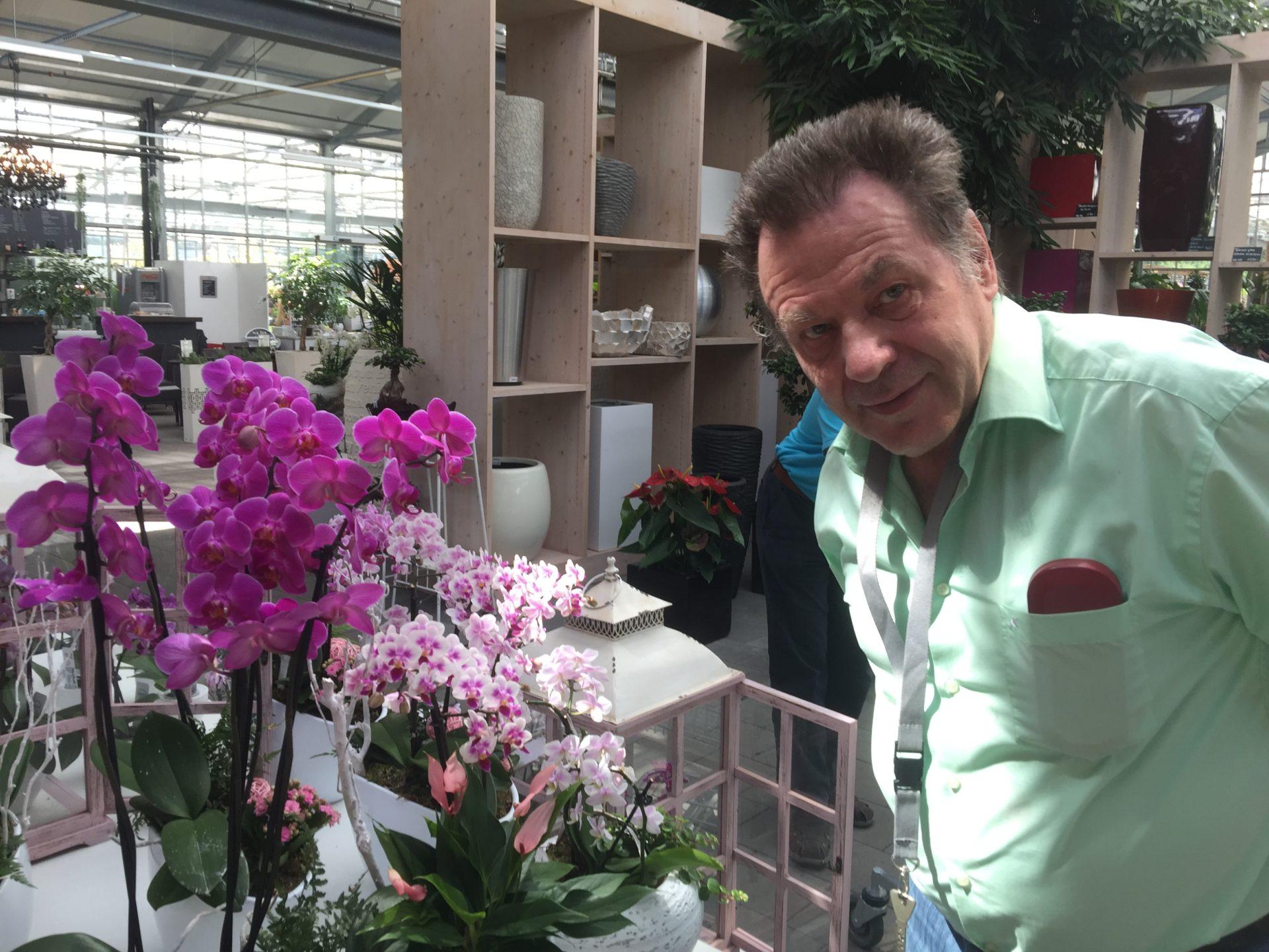 Orchidieen